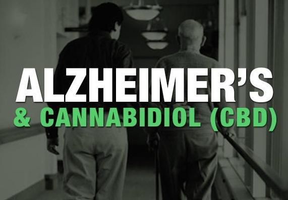alzheimer's cbd oil